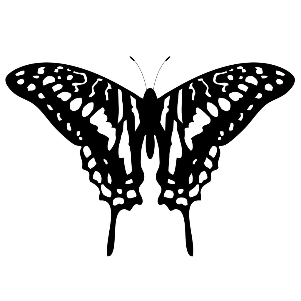 Unique Butterfly tattoos