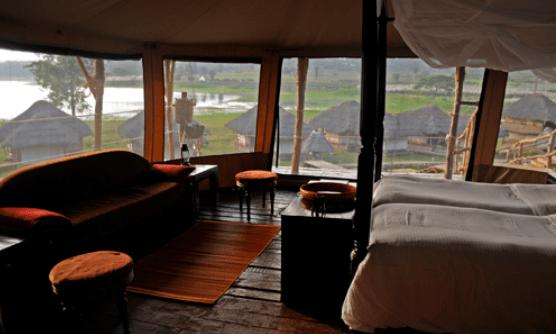 Bison Resort for forest lodges post