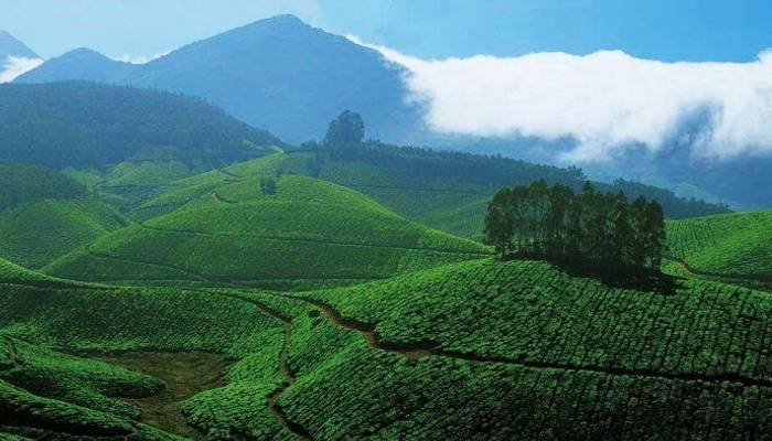 Best Monsoon Travel Destinations