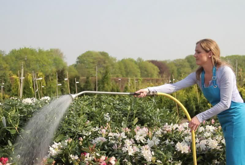 Great Organic-gardening
