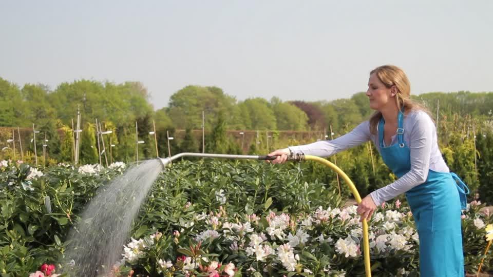 Great Organic gardening