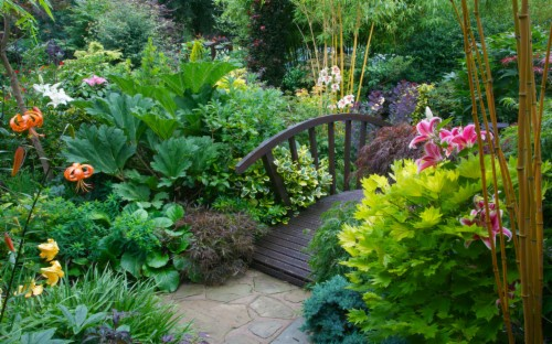 Landscaping Recommendations Garden
