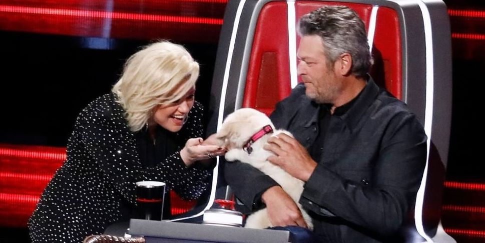 'The Voice' Fans React to New 'Road to Live Shows'