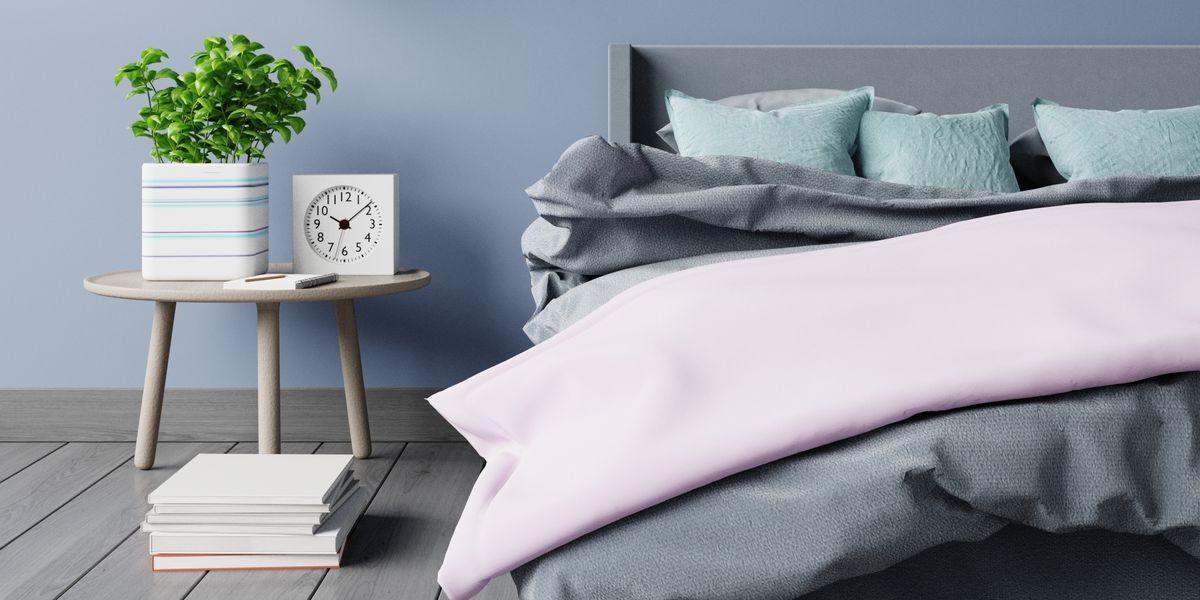 15 Best Bedroom Plants – Plants for Bedroom That Clean Air