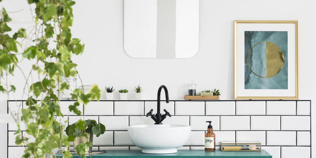 16 Best Bathroom Plants – Bathroom Plants Online