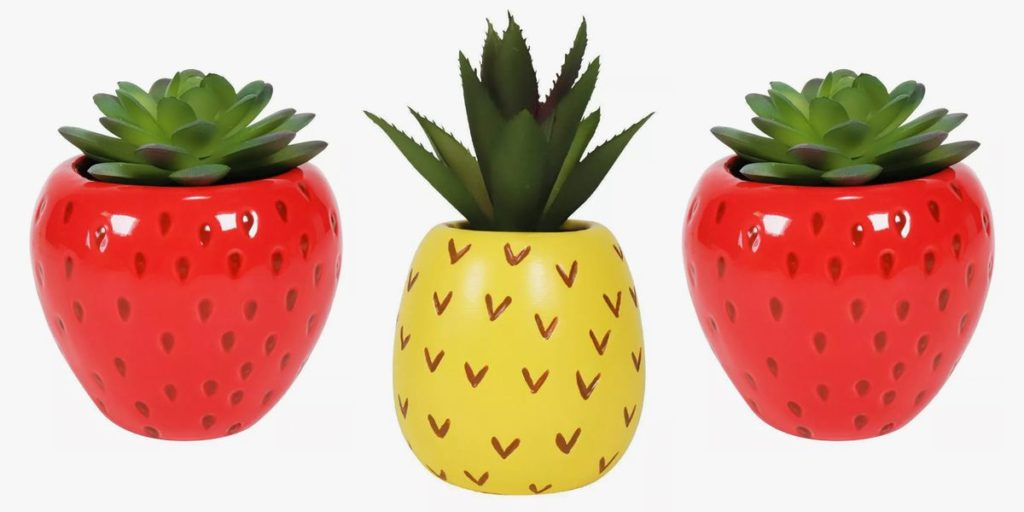 Target's New Pineapple And Strawberry Succulents