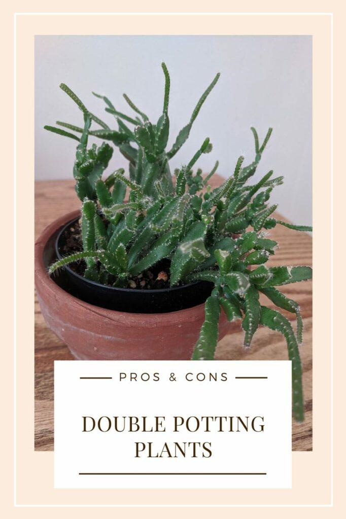 Double Potting