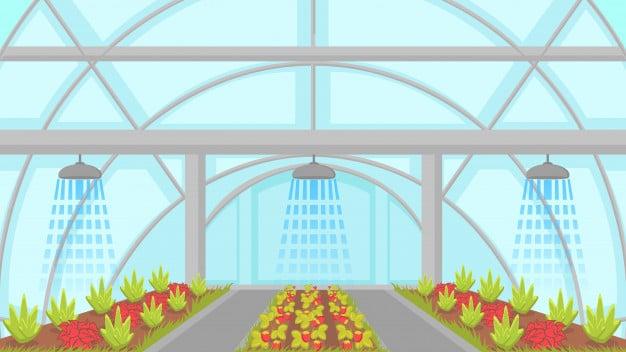 Aquaponics Indoor Gardening