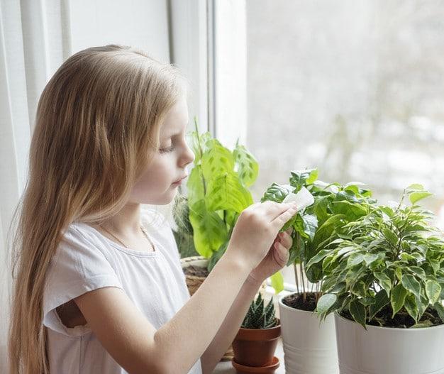 Gardening as a Meditation