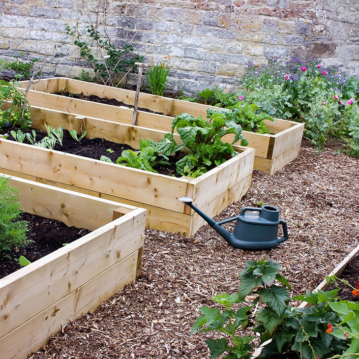 Raised Bed Gardening Trumphs Over Poor Soil Conditions
