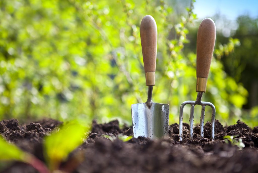 Right Gardening Tools