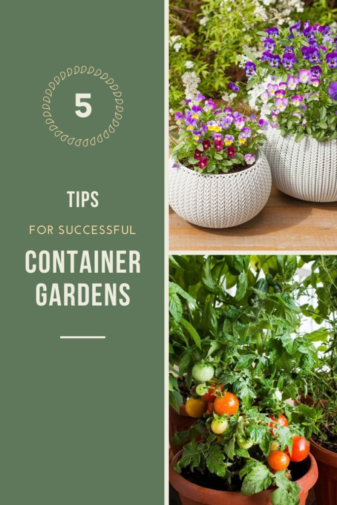 Successful Container Gardening Tricks