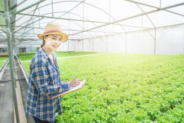 Successful Vegetable Gardening in Alabama