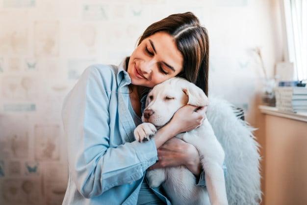 Understanding the Benefits of Pet Insurance