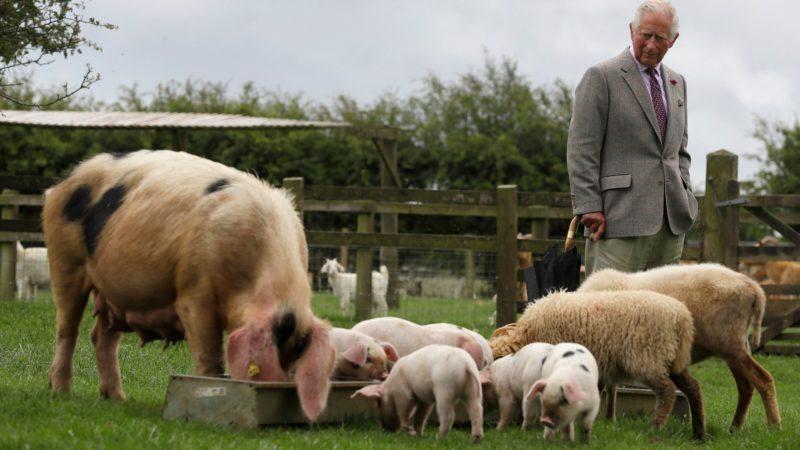 Prince Charles visiting the organic farm