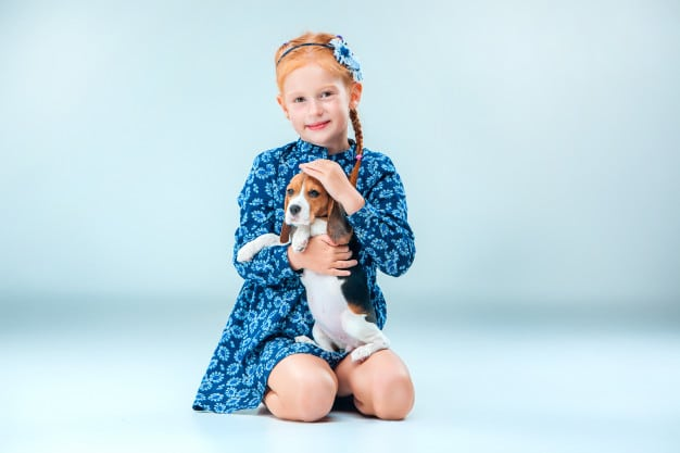 Puppy: How To Care For your Pet Dog