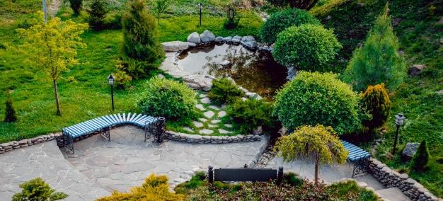 Water Garden Ideas and Advice