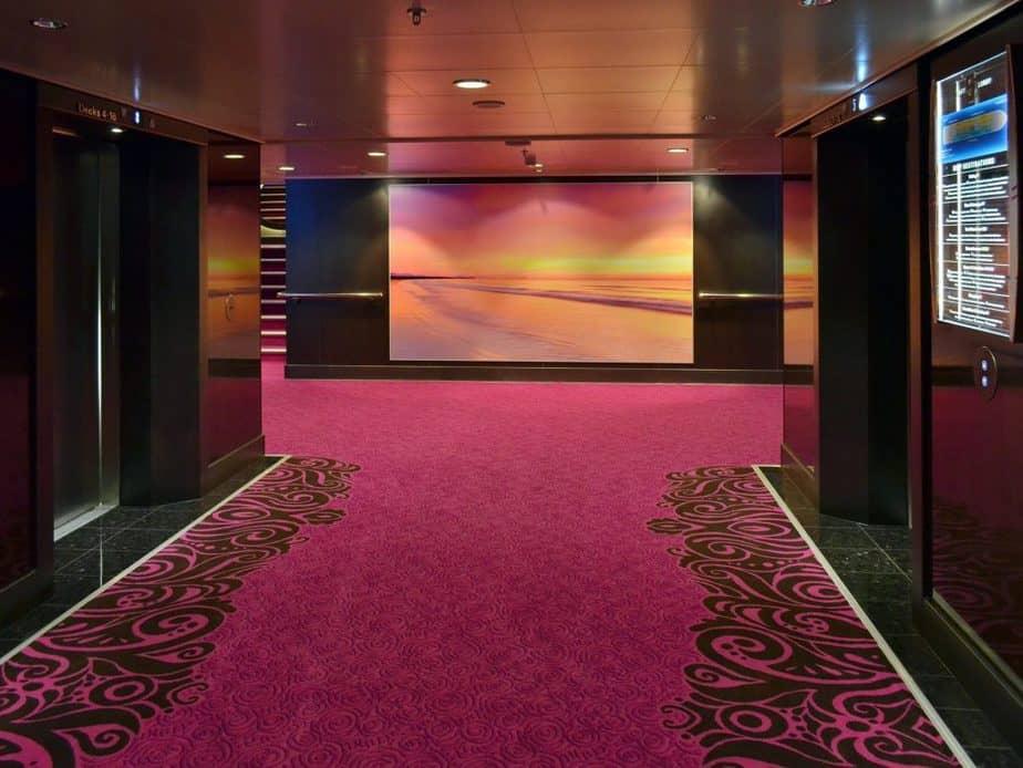 Carpet 5 Hallway