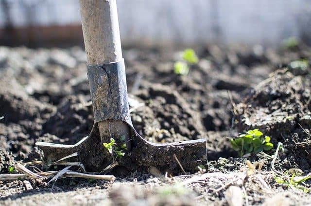 3 Digging the soil over before planting helps to improve drainage