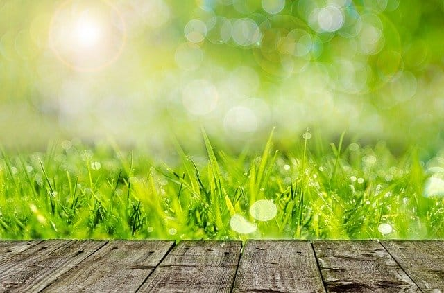 Spreader 2 Lawn