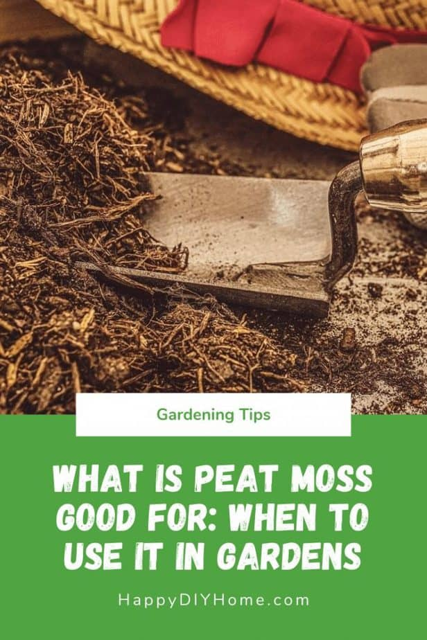 What is Peat Moss Good For