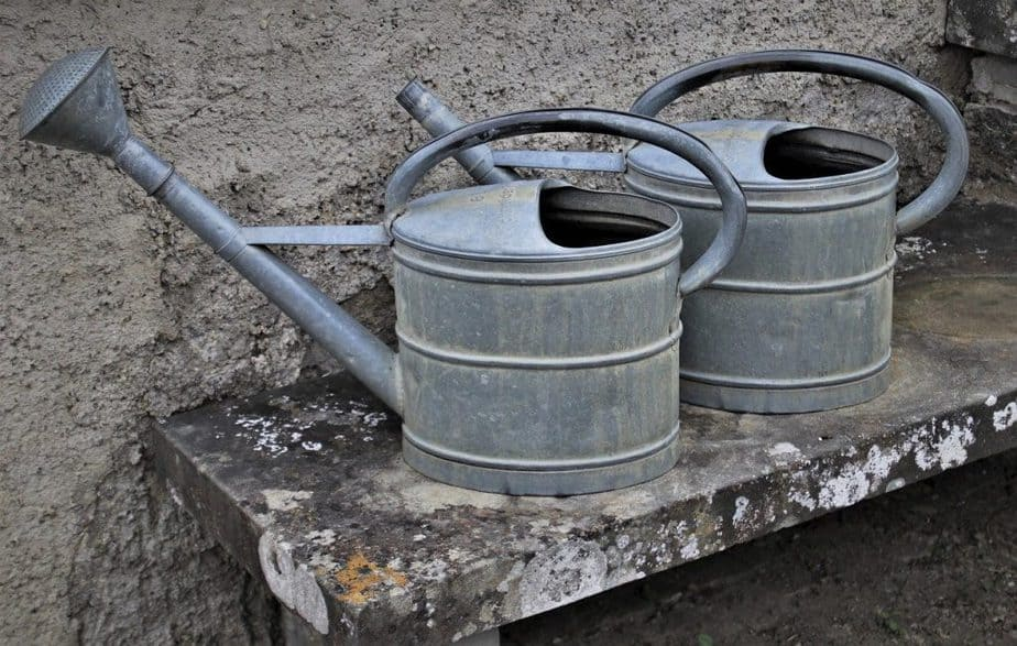 8 Watering Cans