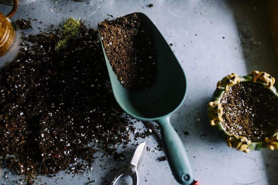 6 Potting Soil