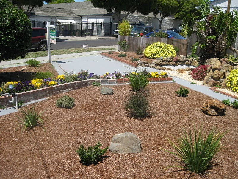 37. Recent yard conversion to xeriscape thoroughly mulched