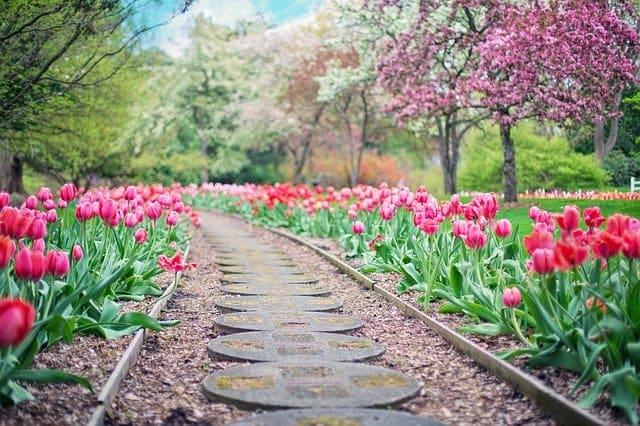 Best Flooring Options to Restore Your Garden or Yard Walkways