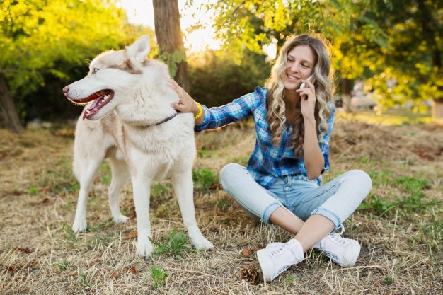 Flea and Tick Prevention Products