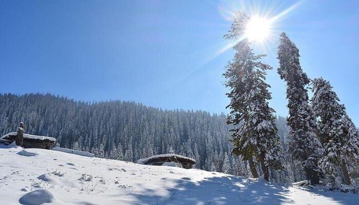Apple Valley in Kashmir