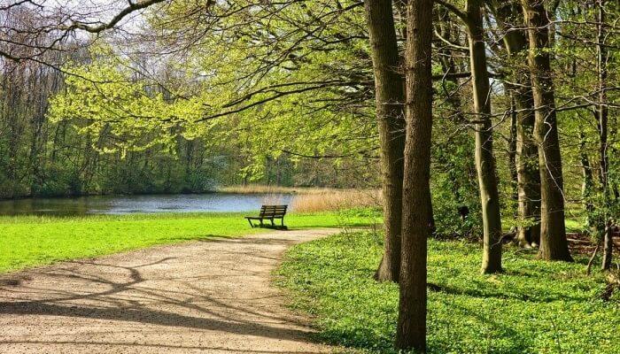 ryemood park so peaceful