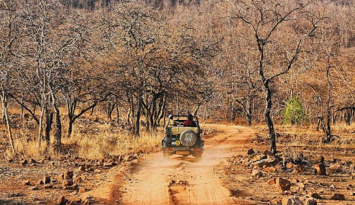 National Park in Khajuraho