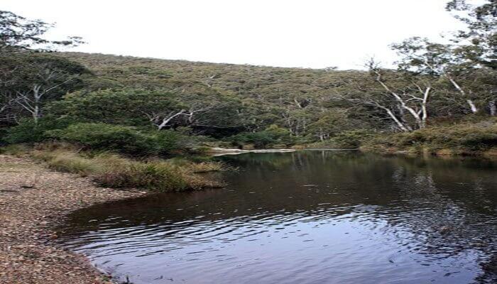 Kowmung River