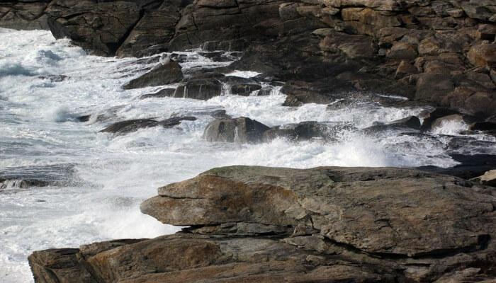 Abbi Collie Falls