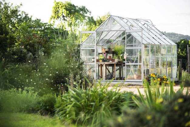 Free DIY Greenhouse Plans
