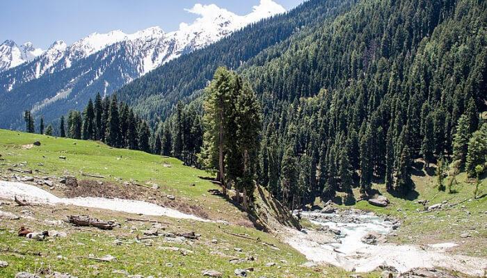 Liddar valley in kashmir