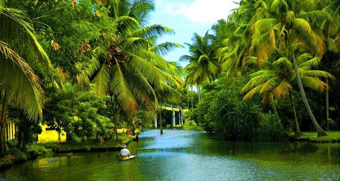 Road Trips From Kochi