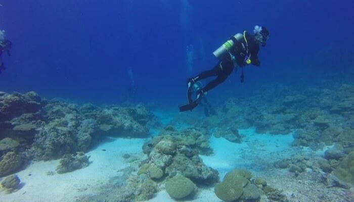 Scuba diving is awesome