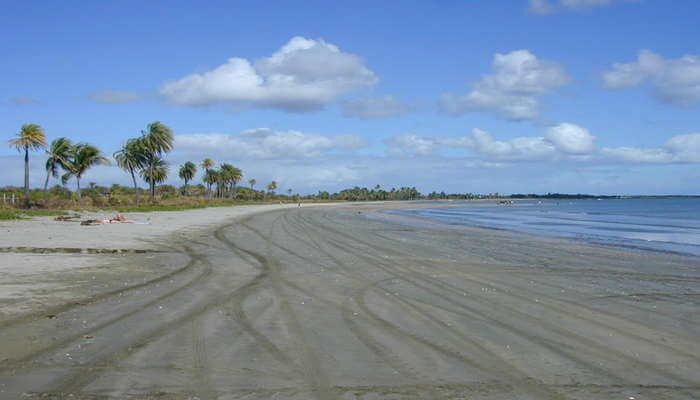 Seagrass bay