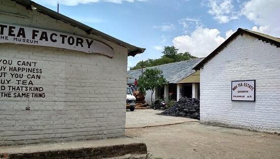 Operative Tea Factory