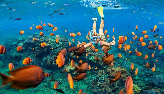 Underwater Attractions of Bahamas