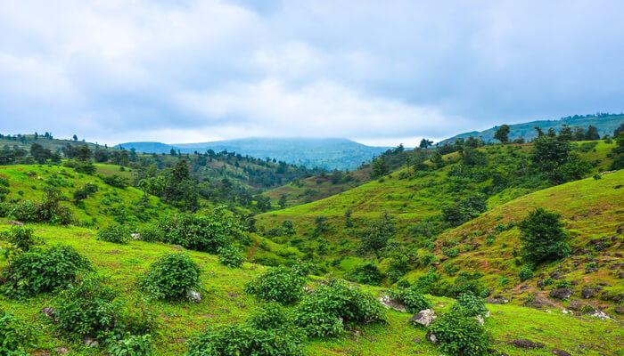Greenery on mountains