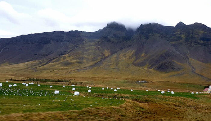 countryside_Iceland