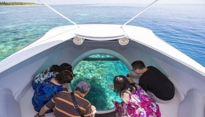 See the coral reef through a glass bottom boat
