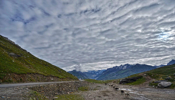 Rohtang Pass gives you beautiful view