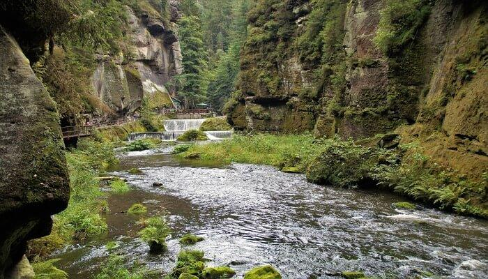 Chilean Schillerian Canyon
