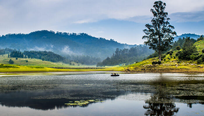 Kodaikanal – Princess Of Hill Stations