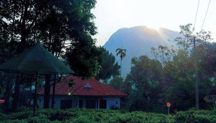 Paithal mountain cottage
