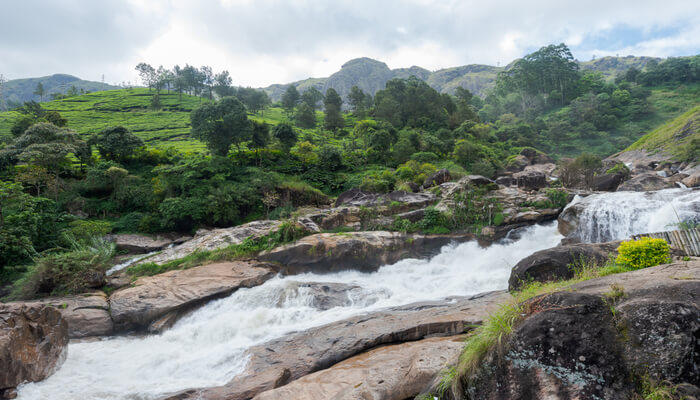 Munnar – Popular Destination For Honeymooners